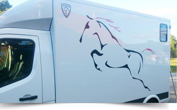 Klisterdekal på hästbuss