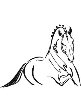 Hästdekal dressyr